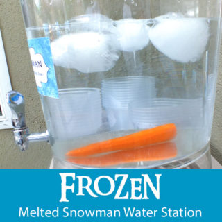 Frozen Melted Snowman Water Station