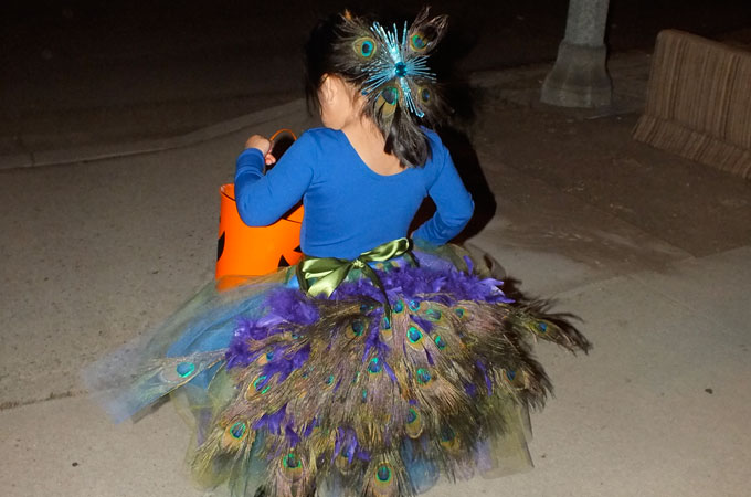 f5578fb75 DIY Peacock Costume - Two Sisters