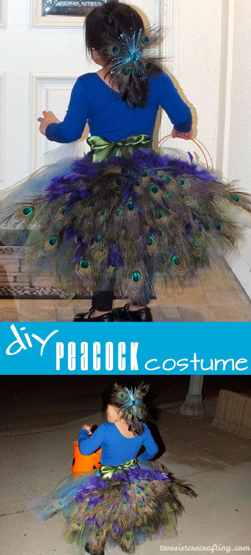 Diy Peacock Costume Two Sisters