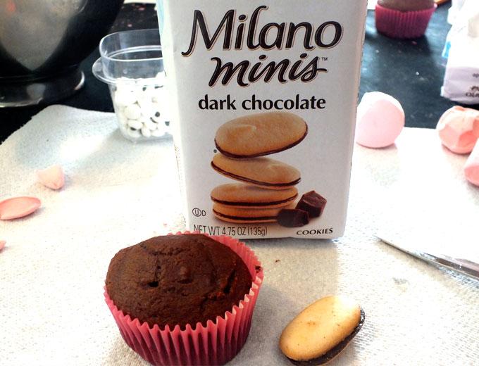 Cupcake and Mini Milano Cookies