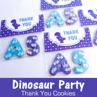 Dinosaur Party Thank You Cookies
