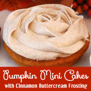 Pumpkin Mini Cakes
