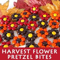 Harvest Flower Pretzel Bites