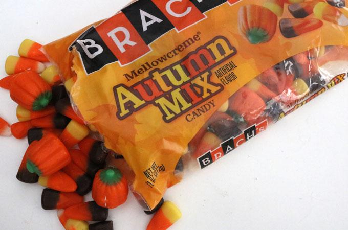 Autumn Mix Candies
