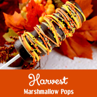 Harvest Marshmallow Pops